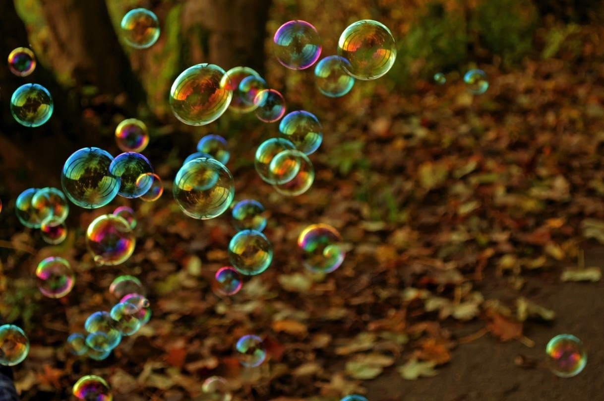 Soap bubbles and leaves on ground